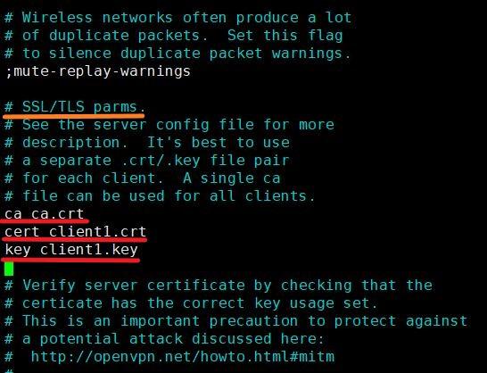 Редактирование SSL TLS parms