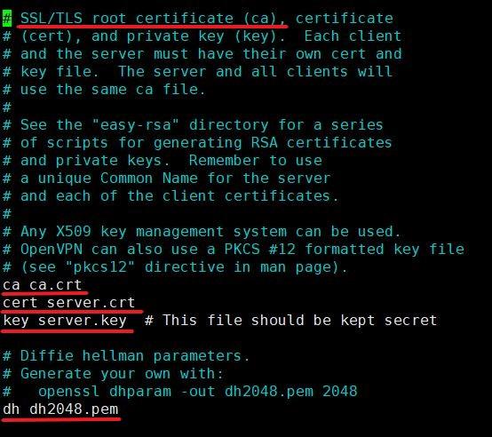 Файл конфигурации OpenVPN